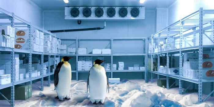Frío Industrial en Lucena