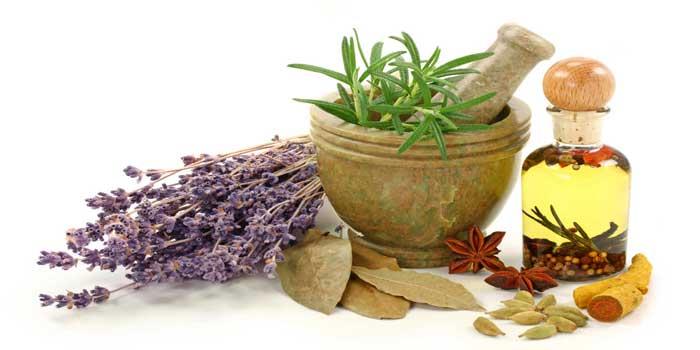 Plantas Medicinales en Lucena