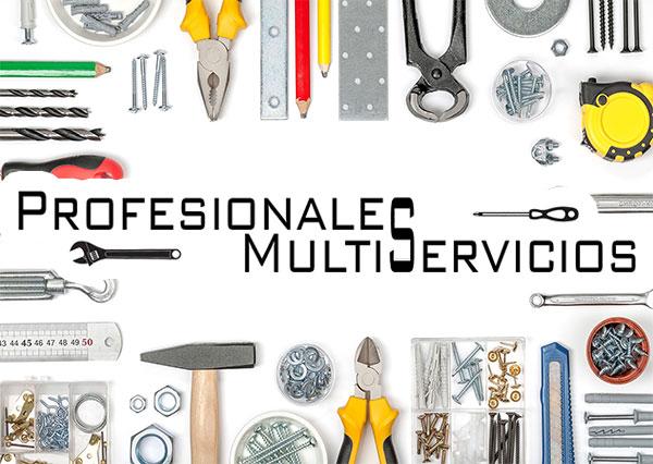 Profesionales Multiservicios