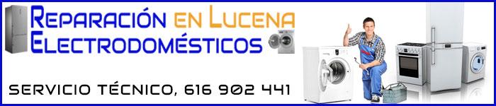 Reparación de Electrodomésticos en Lucena