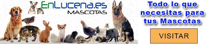 Artículos para Mascotas